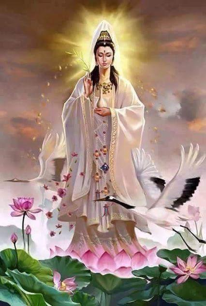 tranh hoa sen Phật Giáo